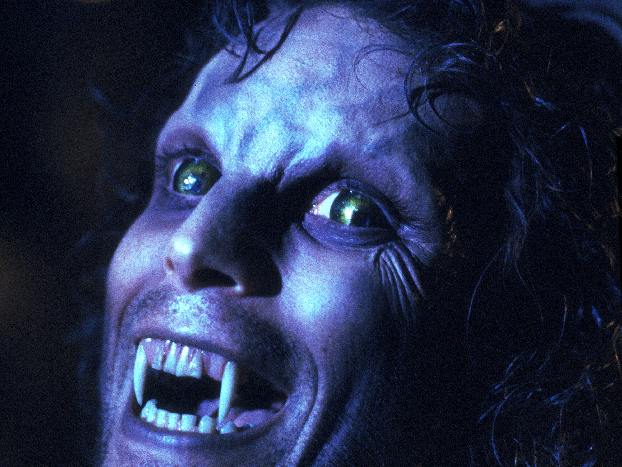 Is this the greatest werewolf movie ever made?