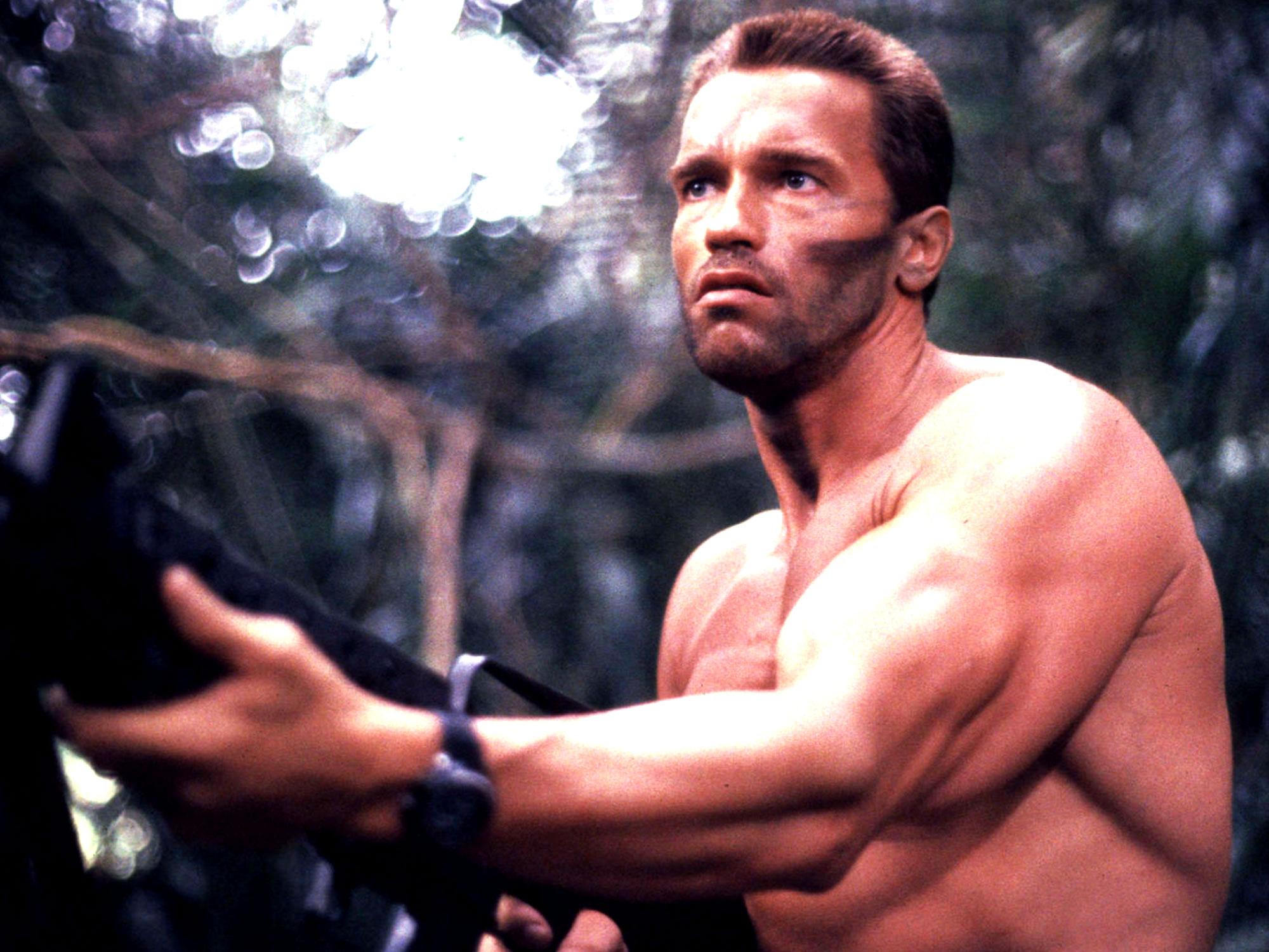 Every Arnold Schwarzen...