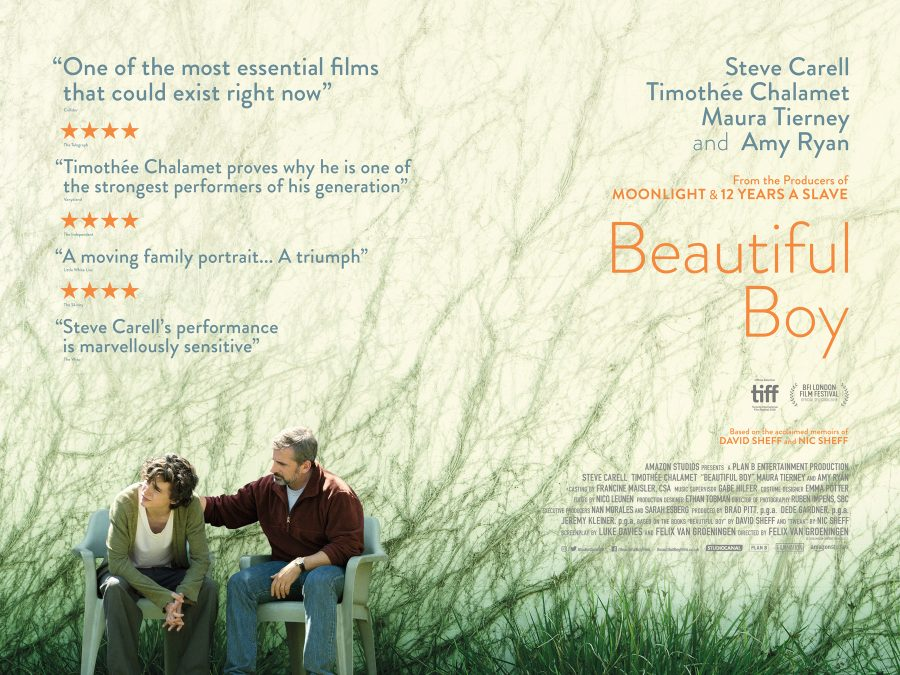 Image result for beautiful boy poster