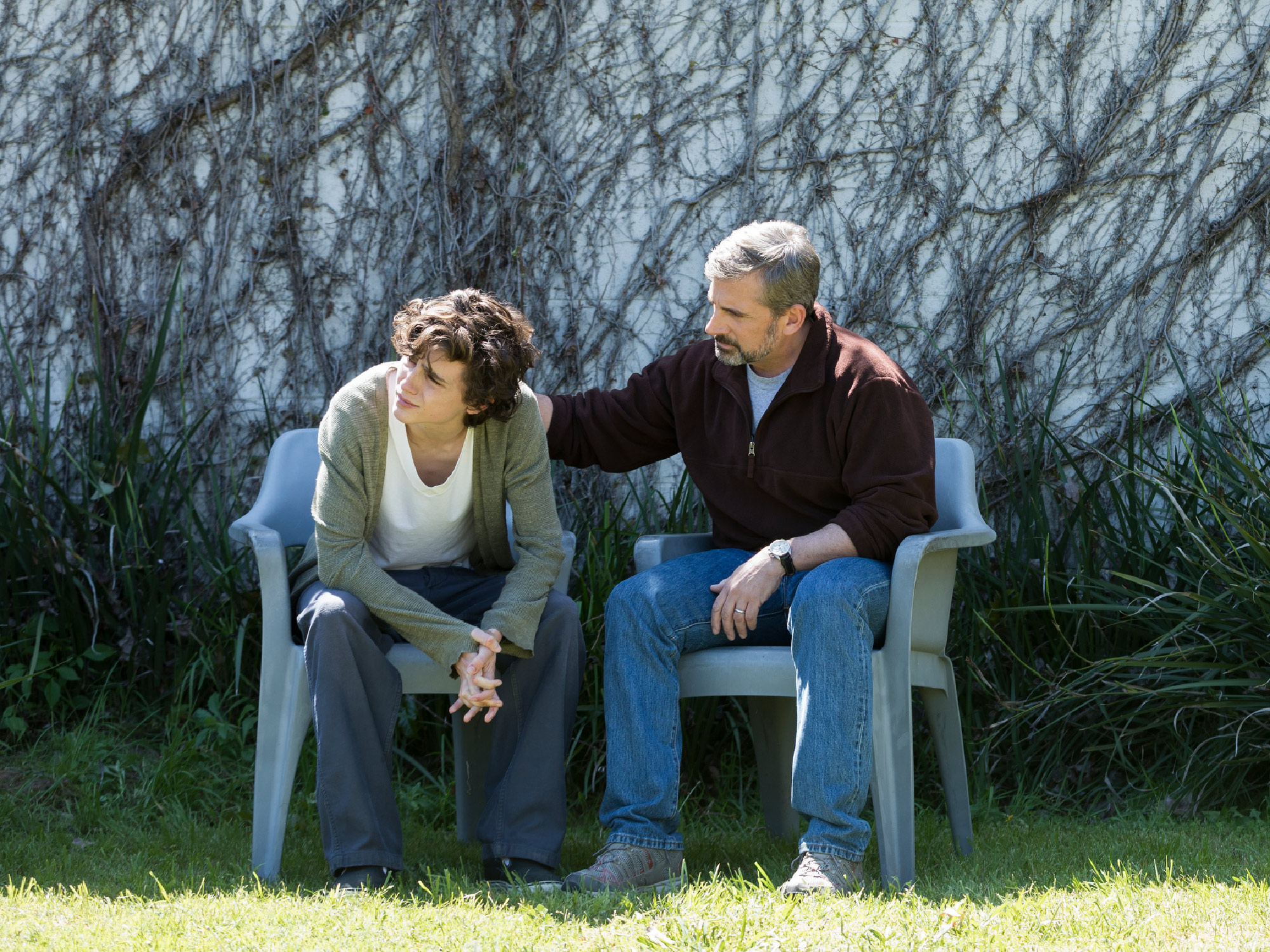 Could you draw Timothée Chalamet or Steve Carell in Beautiful Boy? - Little White Lies