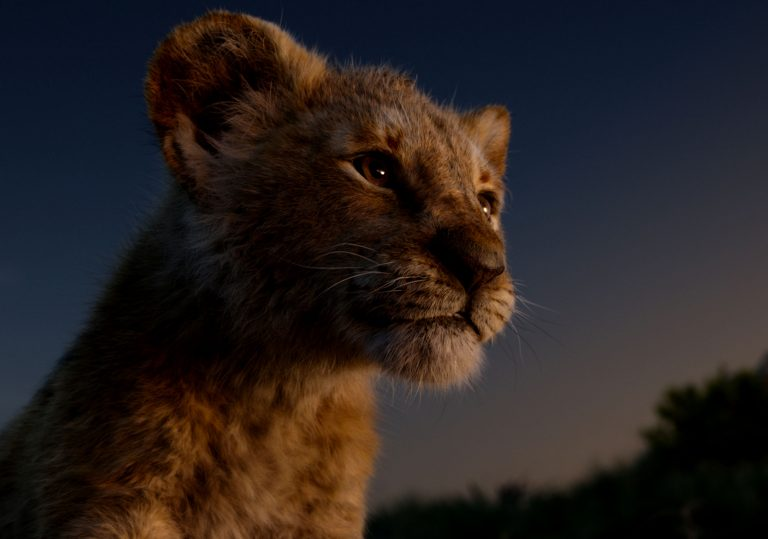 The Lion King review – A visually spectacular carbon copy
