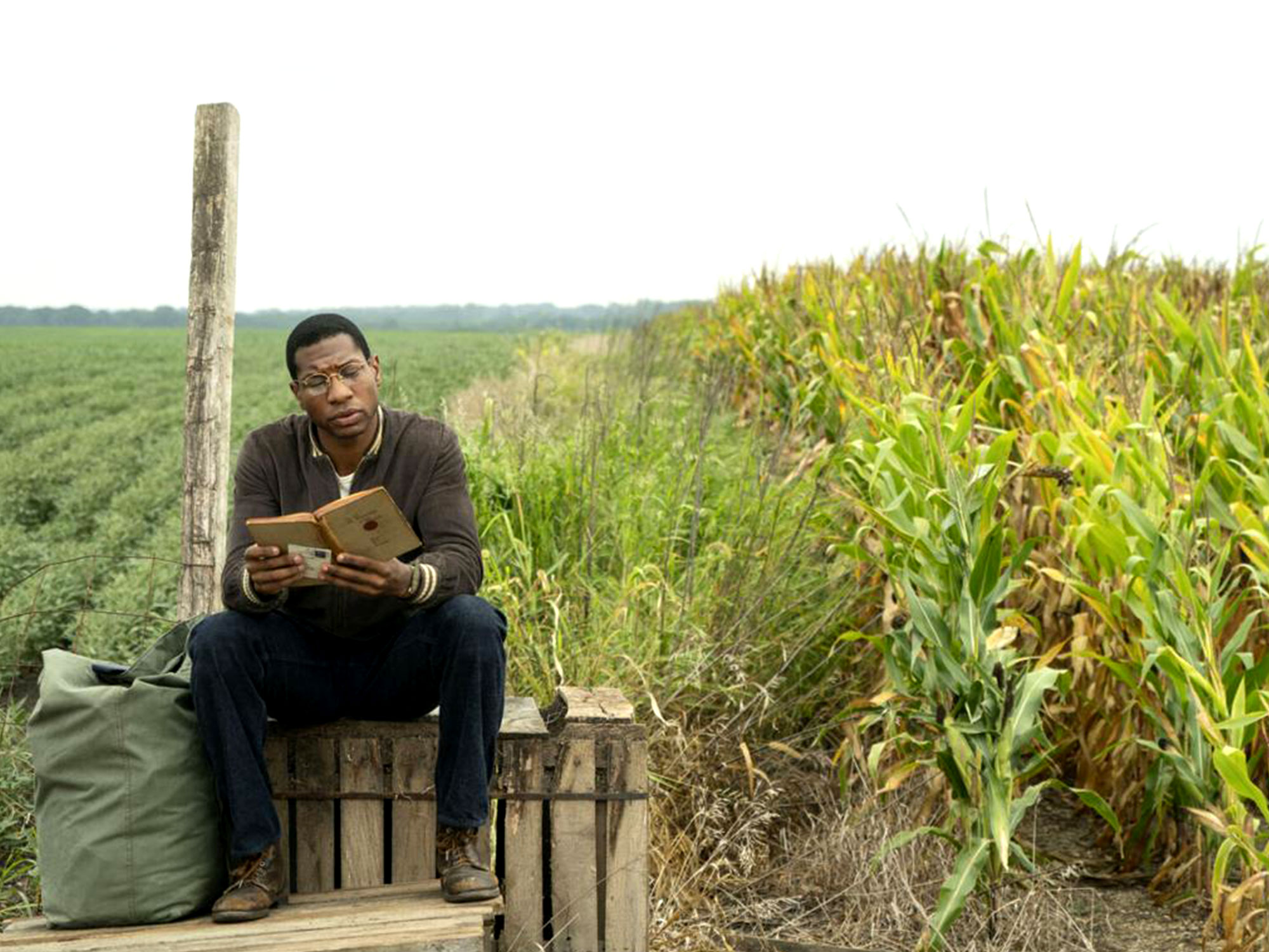 Jonathan Majors in Lovecraft Country (2019)