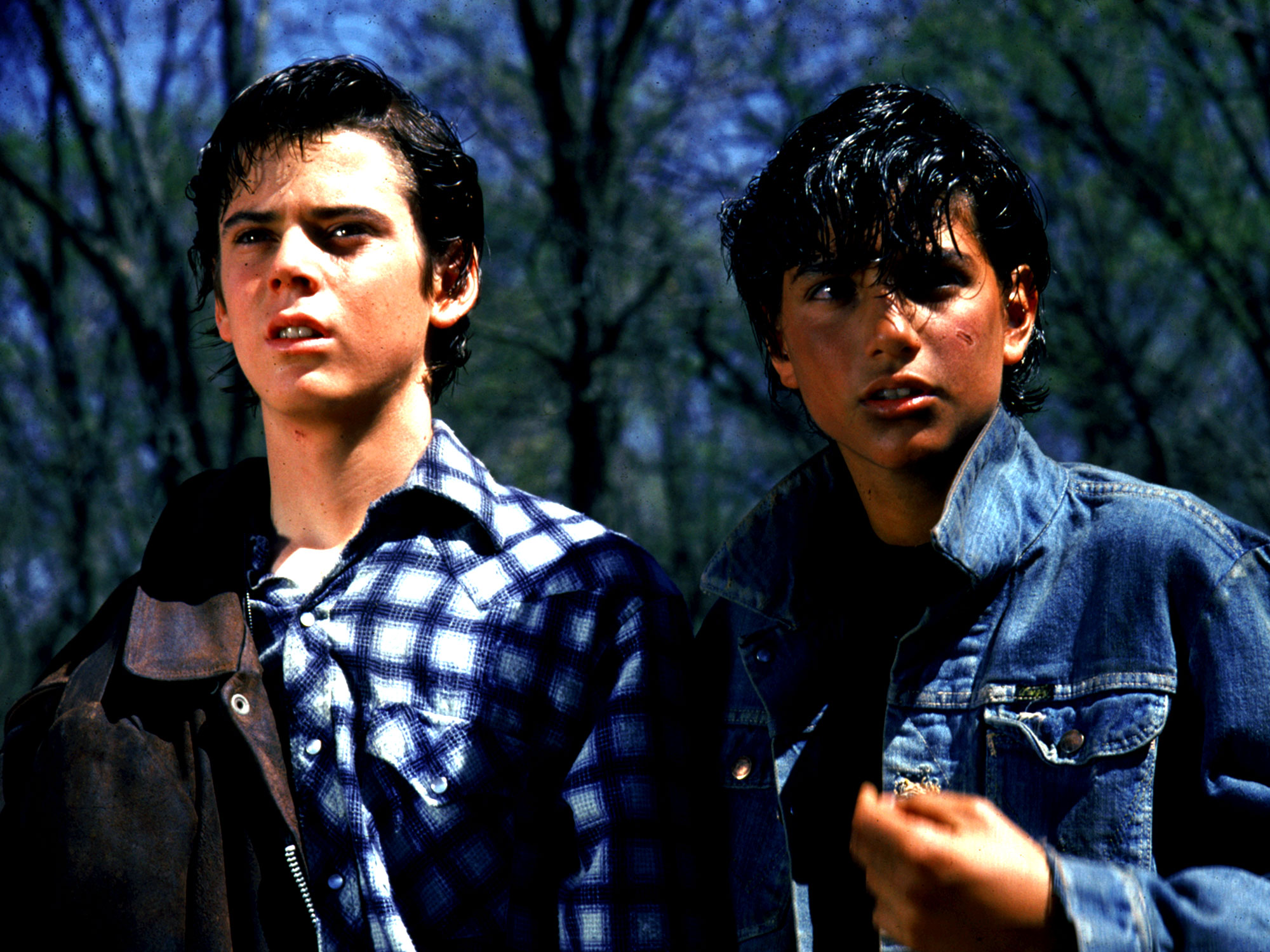 Nothing Gold Can Stay – In praise of Francis Ford Coppola's The Outsiders